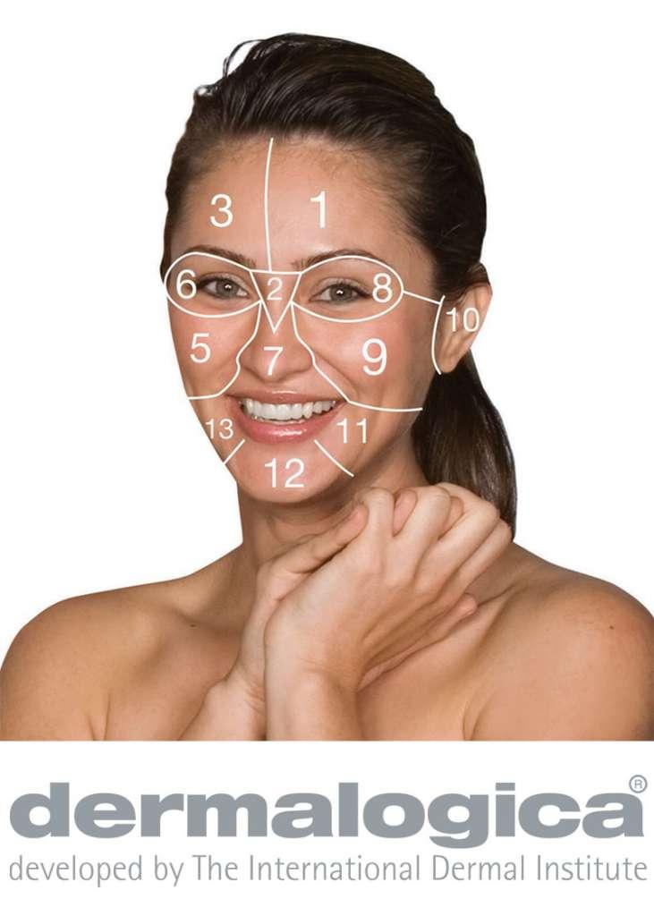 dermalogica_facemap